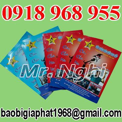 In túi giấy ghép màng nhôm thức ăn gia súc| congtyinbaobigiay.com