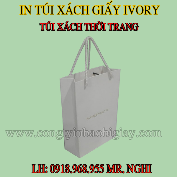 in tui xach giay| congtyinbaobigiay.com